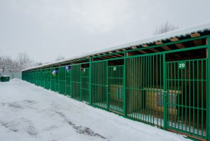 Design work for dog kennels